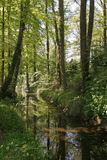 Weinig rivier Duete in Nedersaksen, Duitsland Stock Afbeeldingen