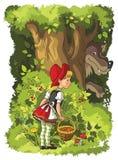 Weinig Rode Berijdende Kap en Wolf in het bos Stock Fotografie