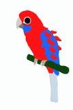 Weinig rode papegaai stock illustratie