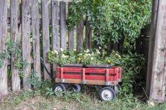 weinig rode wagen van bloemen in tuin stock afbeelding