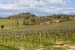 Weinig stadsmontepulciano in het gebied van Toscanië royalty-vrije stock foto's