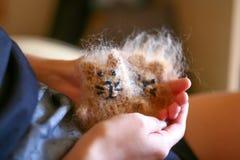 Weinig stuk speelgoed de katten worden gehouden in hand stock afbeelding