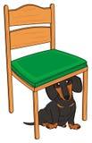 Weinig tekkel en een stoel Stock Foto's