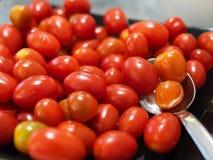 Weinig tomaat Royalty-vrije Stock Afbeeldingen
