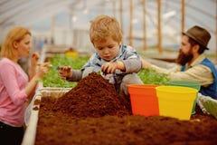 Weinig tuinman weinig tuinmanwerk met grond weinig tuinman in serre weinig tuinmankind die bloemen planten stock foto's