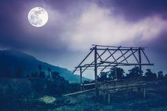 Weinig van bamboehut en berg pieken Silhouetten van bomen met Stock Foto's