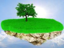 Weinig vliegend graseiland met een boom. Stock Fotografie