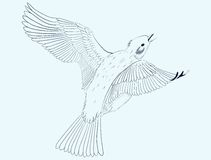 Weinig vogel stock illustratie