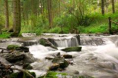 Weinig waterval Stock Foto's