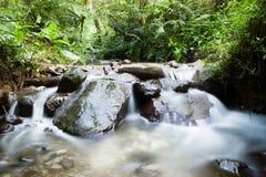 Weinig Waterval in het Bos Stock Foto