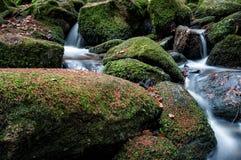Weinig waterval II Stock Afbeeldingen
