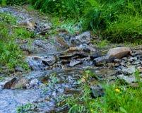 Weinig waterval op manier in het bos Stock Afbeelding