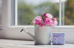 Weinig witte gieter met rozen en blauwe giftdoos dichtbij Royalty-vrije Stock Foto