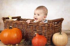 Weinig zitting van de babyjongen in de mand met pompoenen Royalty-vrije Stock Afbeelding