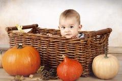 Weinig zitting van de babyjongen in de mand met pompoenen Royalty-vrije Stock Foto