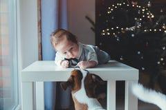 Weinig zuigeling en hond met Kerstboom op achtergrond royalty-vrije stock foto's