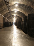 Weinindustrie Lizenzfreies Stockfoto