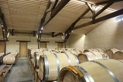 Weinkeller an Chateau d ` Yquem, Frankreich Stockfoto
