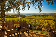 Weinkellerei übersehen Stockbild