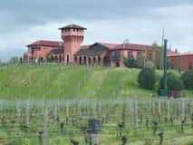 Weinkellerei mit Gebäude im Hintergrund stockfoto