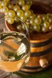 Weinkonzept Lizenzfreie Stockfotos