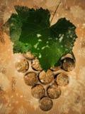 Weinkonzept mit Weinkorken und Weinblättern Stockfotografie