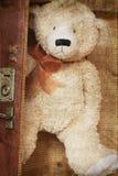 Weinlese-ähnlicher Teddybär und alter Koffer Stockfotos