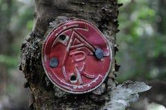 Weinlese Adirondack-Hintermarkierung, McKenzie-Berg, Adirondack Forest Preserve, New York stockbild