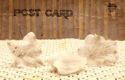 Weinlese-Art-Postkarte lizenzfreies stockbild