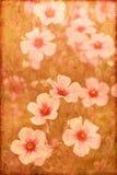 Weinlese-Blumen Lizenzfreie Stockfotos