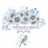 Weinlese-Blumenkarte mit Vögeln und Gänseblümchen Lizenzfreie Stockbilder