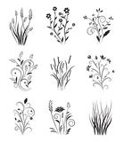 Weinlese-Blumenset Lizenzfreie Stockfotos