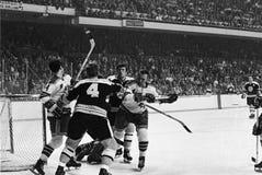 Weinlese Bruins -- Försterkampf Stockbilder