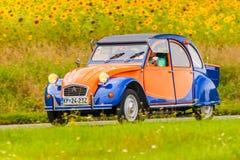 Weinlese Citroen 2CV vor einem Feld mit blühenden Sonnenblumen Lizenzfreie Stockfotografie