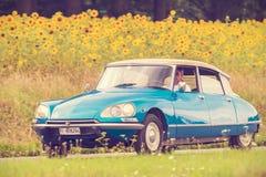 Weinlese Citroen DS vor einem Feld mit blühenden Sonnenblumen Lizenzfreies Stockbild