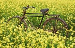 Weinlese-Fahrrad auf dem ländlichen Senfgebiet lizenzfreie stockfotos