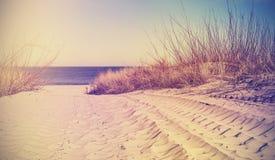 Weinlese filterte Strand, Naturhintergrund oder Fahne stockbild