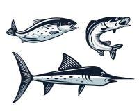 Weinlese-Fische Logo Set Illustration Stockbilder