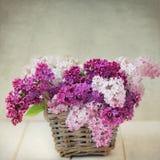 Weinlese-Flieder blüht Blumenstrauß in Wisker-Korb lizenzfreies stockbild