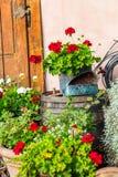 Weinlese-Garten-Dekoration Stockbilder