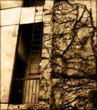 Weinlese-Gebäude Lizenzfreie Stockfotos