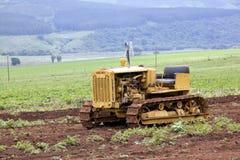 Weinlese-gelber Diesel vierzig Caterpillar auf Anzeige Lizenzfreies Stockfoto