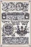 Weinlese-Hand gezeichnete grafische Fahnen und Aufkleber Stockfotografie