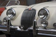 Weinlese-Jaguar - Frontseite Stockbilder