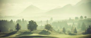 Weinlese-Landschaft mit Bäumen auf Hügeln Stockfotografie