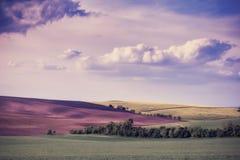 Weinlese-Landschaft mit Feldern und Himmel Lizenzfreie Stockfotografie