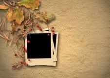 Weinlese maserte Hintergrund mit verblaßtem Herbstlaub und Foto-f Stockbilder