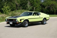 Weinlese-Mustang Lizenzfreie Stockfotos
