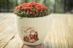 Weinlese Nertera auf Weihnachten Stockfoto