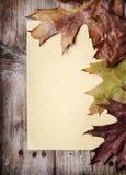 Weinlese-Papier und Herbst-Blätter Lizenzfreie Stockfotografie